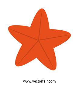cute starfish isolated icon