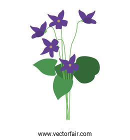 delicate flower icon image