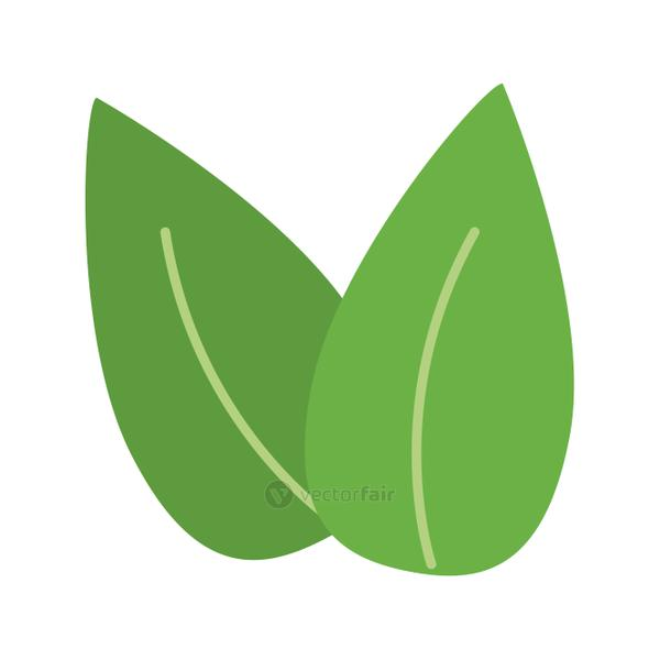 two leaves icon image