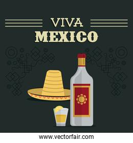 Tequila bottle and shot icon. Mexico culture. Vector graphic