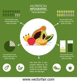 Infographic icon. Nutrition design. Vector graphic