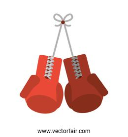 Isolated gloves of fitness gym