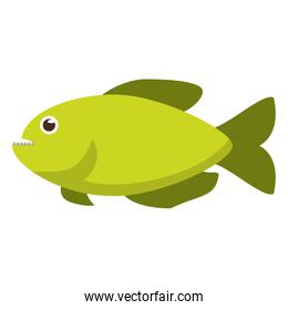 Isolated fish animal cartoon design