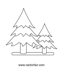 outline two pine tree forest camping icon
