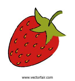 drawing strawberry sweet vitamin nature