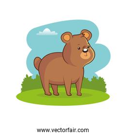 cute bear landscape meadow image