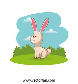 cute rabbit animal with landscape