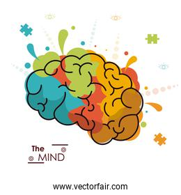 the mind colo brain creativity invention design