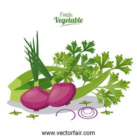 fresh vegetables onion celery nutrition diet