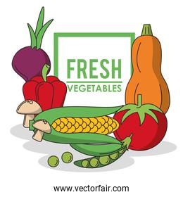 colorful poster with set of fresh vegetables and logo