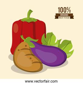 colorful poster of organic best food with peppers potato and eggplant