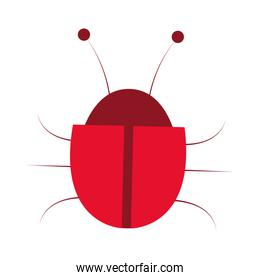 red bug icon