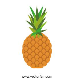 colored pineapple icon
