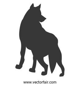 wolf silhouette icon