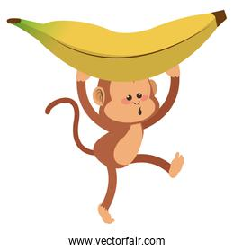 monkey with playful face and banana cartoon icon