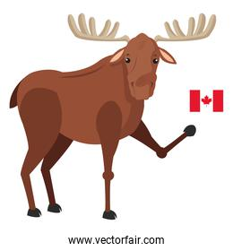 single moose with canadian flag icon
