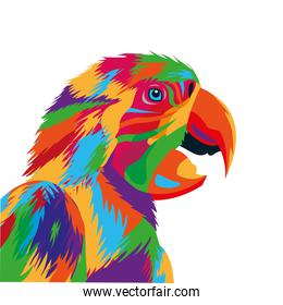 colorful parrot drawing icon