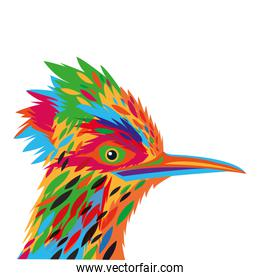 colorful woodpecker drawing icon