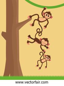 jungle monkeys cartoon