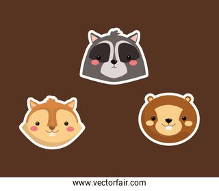 raccoon squirrel and beaver icons image