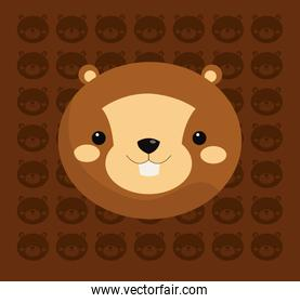 beaver with pattern background image