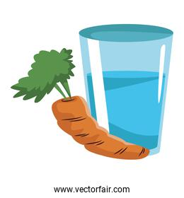 Carrot and water glass