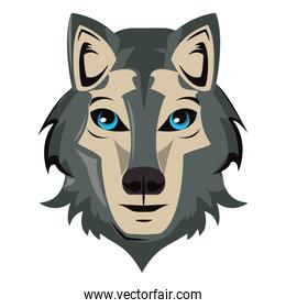 Wolf face cool sketch