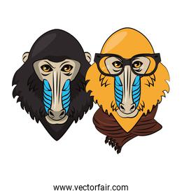 Hipster mandrills cool sketch two faces