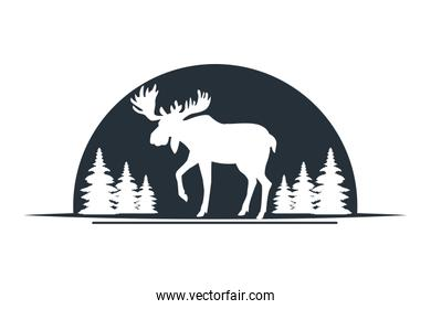 Moose wild animal black silhouette isolated in nature with trees scenery