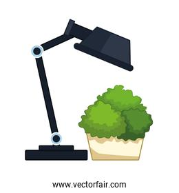 desk lamp and decorative plant