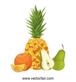Fresh and delicious tropical fruits