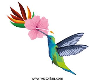 beautiful wild birds with exotic flower
