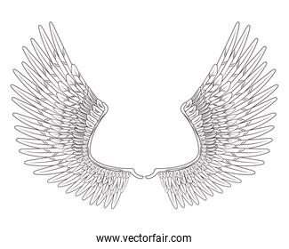 wings drawn in black and white