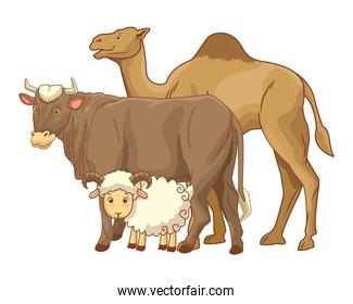 Camel cow and goat animals cartoons