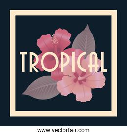 Tropical icon design