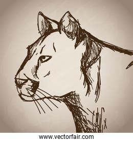 panther portrait forest hand drawing vintage
