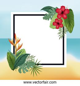 poster hibiscus and bird of paradise beach leaves palm