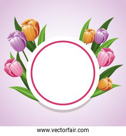 card tulip flower decoration template
