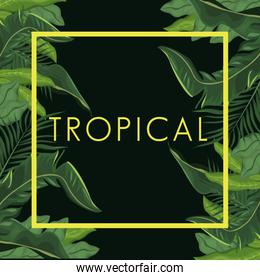 tropical leave palm tree poster
