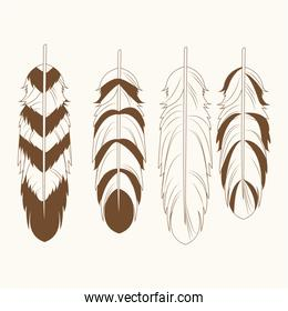 collection differents feathers free spirit