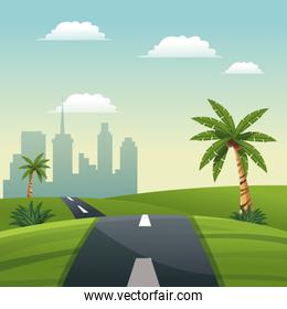 road meadow palm tree travel vacation - city background