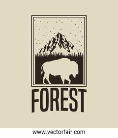 beige color background with rectangle frame logo forest with buffalo silhouette