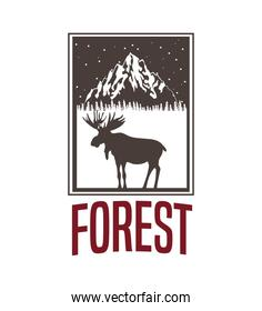 beige color background with rectangle frame logo forest with moose silhouette