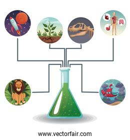 conceptual map connected of color circular icons with picture world evolution to glass beaker with formula