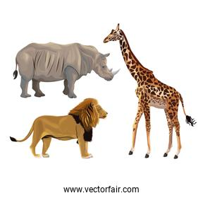 white background with set realistic colorful wild african animals
