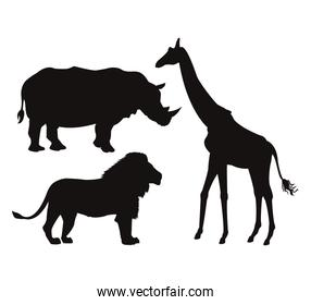white background with set black silhouette of wild african animals