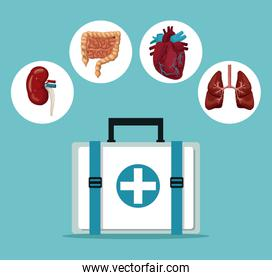 color background with first aid box with icons circular frame intern organs human body