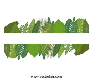 white background with linear edge decorative of green leaves
