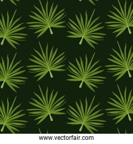 pattern color set decorative of palm irregular green leaves