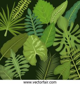 background color set decorative types green leaves plant with branches